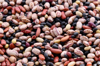 For The Love Of Legumes Everything You Need To Know About The Plant Based Powerhouses