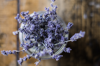 7 Herbs For Your Beauty Routine